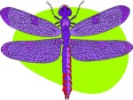 dragongfly-purple